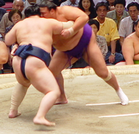 steroid-use-in-sumo-wrestling