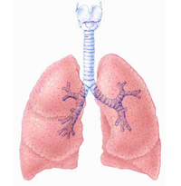 New approach for treating severe asthma identified