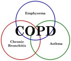 Lung function decline halted in COPD and Asthma by Vitamin D