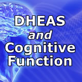 Women with higher DHEAs have effective cognitive function