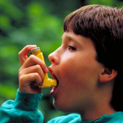Some asthmatic children less responsive to steroids