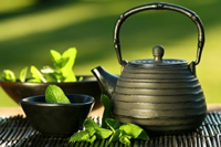Onset of Type 1 diabetes may be delayed by Green Tea