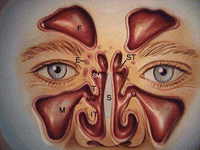 Minimally invasive sinus surgery becoming popular than ever