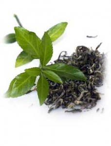 Green Tea can delay type 1 diabetes onset