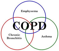 Exacerbation rate in COPD reduced by Roflumilast