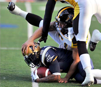 Bellefeuille says Ticats do not have a steroid problem