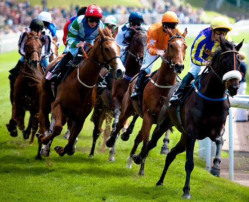 use of steroids in horse racing A false positive test for the muscle-building anabolic steroid methandriol has prompted the irish horseracing regulatory board to terminate its links with bhp laboratories ltd, 22 years after the limerick-based firm first began testing equine samples for the regulator it is the second time a false positive test.