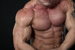Designer Anabolic Steroid Control Act