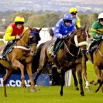 Australian Trainers Investigated In Cobalt Doping Inquiry
