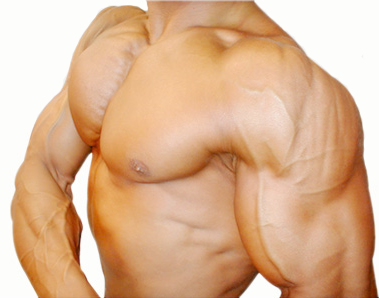 Vanadyl Sulfate Effective for Bodybuilding