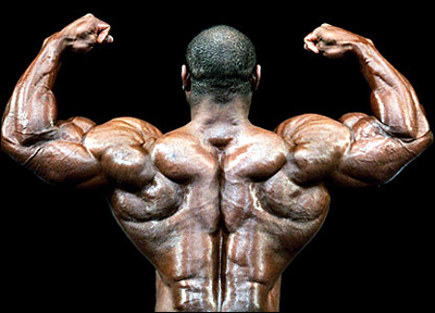 Flex Wheeler mr. olympia