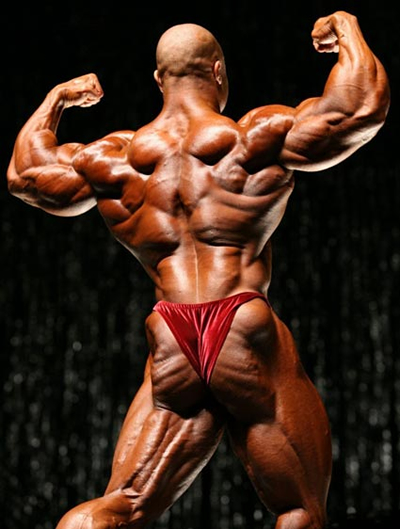 phil heath mr. olympia