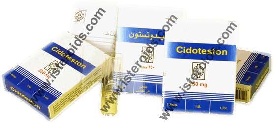 testosterone enanthate cidoteston